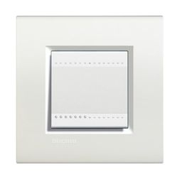 Plaques de recouvrement -LivingLight - Plaque rectangulaire 2 modules blanc