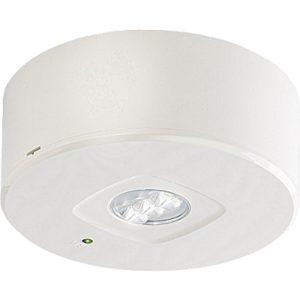 Éclairage de sécurité -PrimEvo HP LED chemin de fuite décentral 4W 335lm 3u NP apparent
